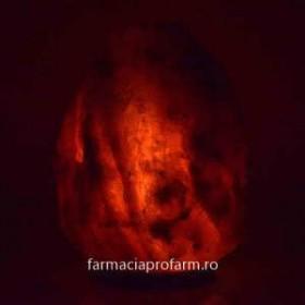 LAMPA ELECTRICA DIN CRISTALE DE SARE 35-50kg MONTE