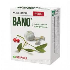 BANO USTUROI + PADUCEL + VASC 30 capsule